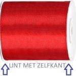 LINT-MET-ZELFKANT
